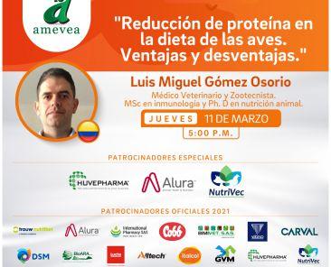 CONFERENCIA VIRTUAL-Luis Miguel Gomez-1