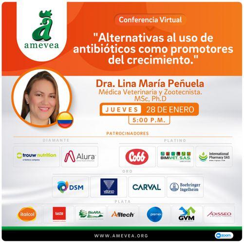10 CONFERENCIA VIRTUAL Lina María Peñuela