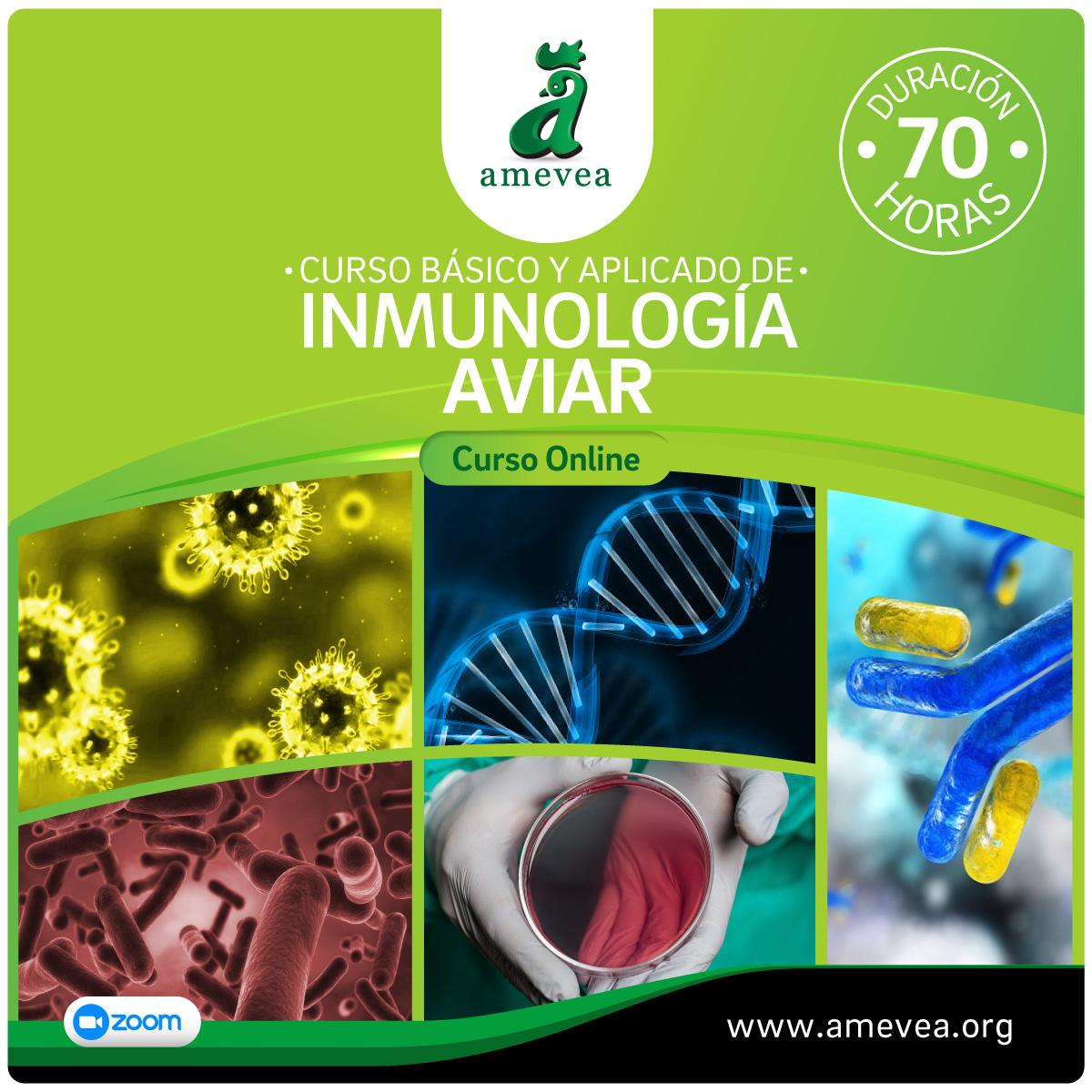 curso-inmunologia-1