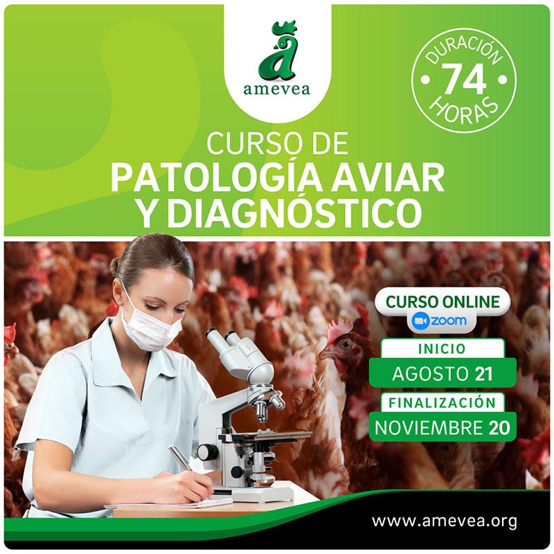 curso_de_patologia_aviar_insta_01a